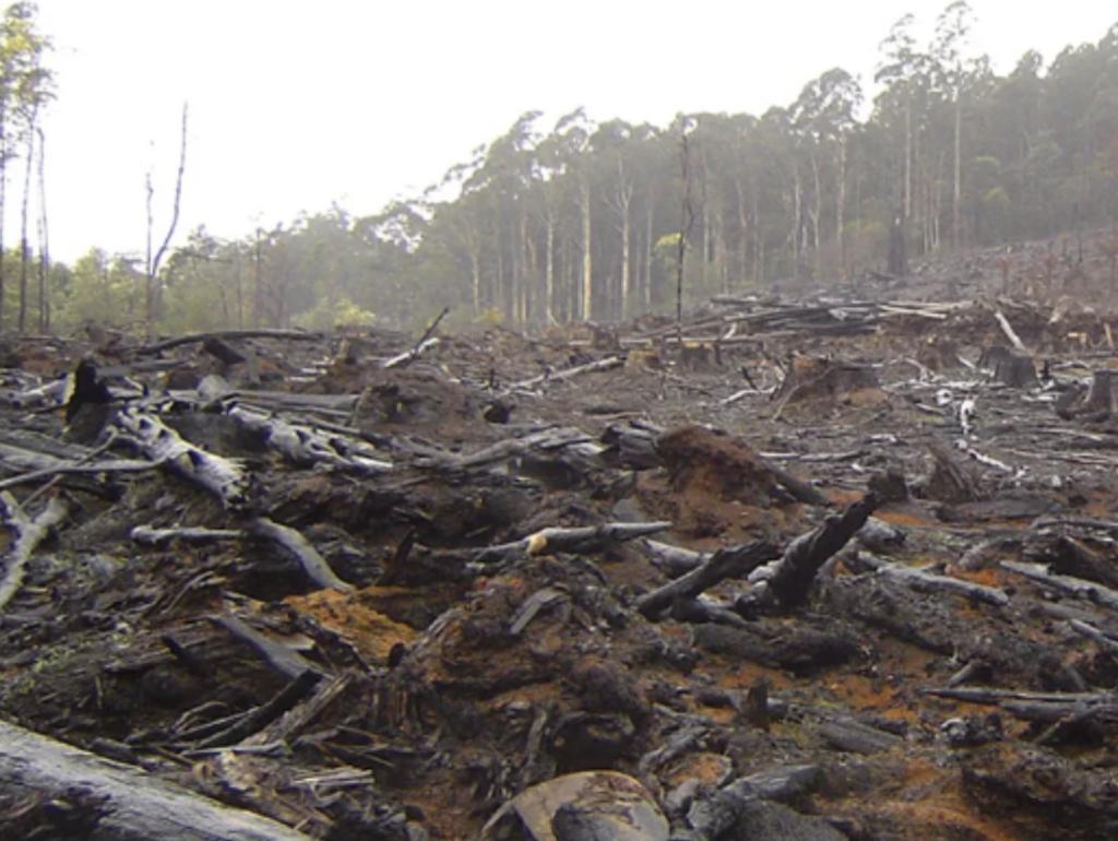 environmental ruins of war