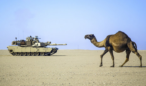 a military tank and a camel in a desert